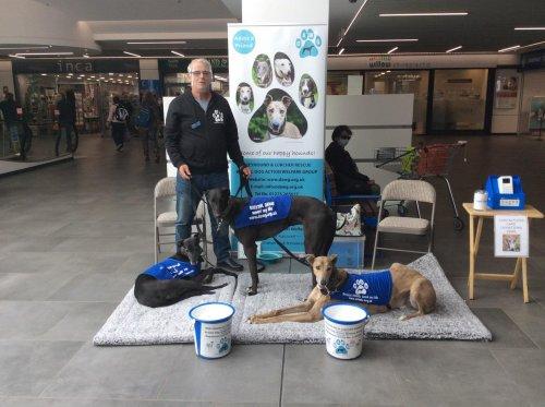 Bristol DAWG raise an amazing £548 for their charity
