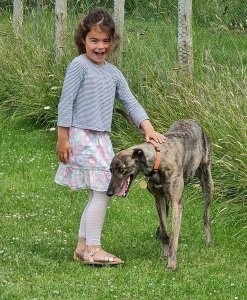 Sophie finds her 'forever home'